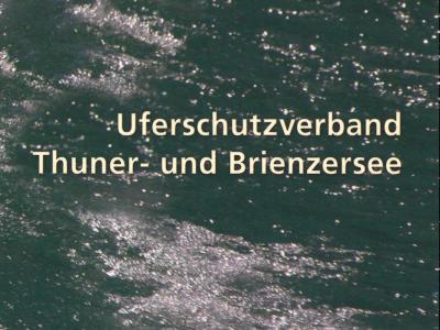Jahrbuch / Uferschutzverband Thuner- und Brienzersee